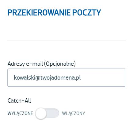 Ustawienia przekierowania poczty w domenie